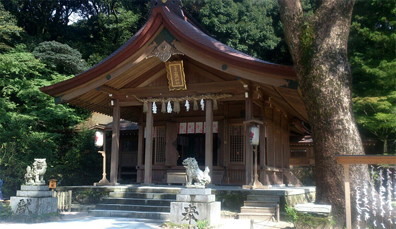 A wooden shinto shrine in a grove of trees guarded by two stone dog statues.