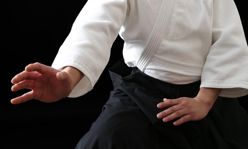 Aikido Kamae