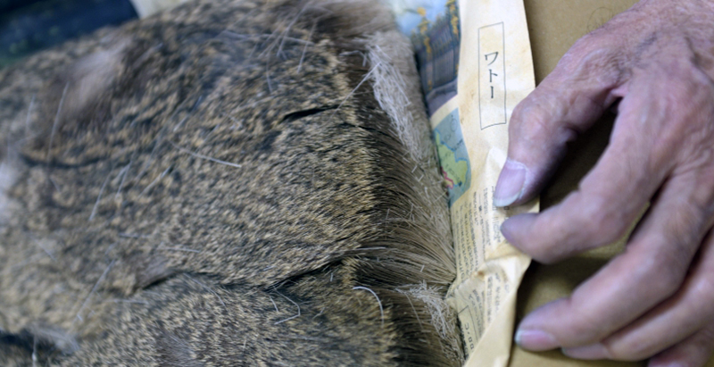 Image of deer fur